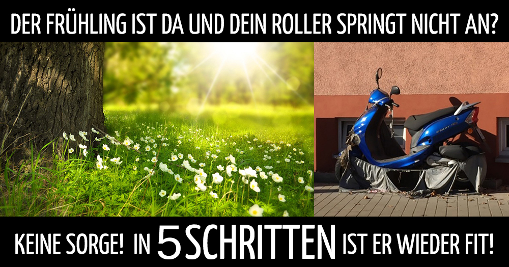 Roller Springt Nicht An Checkliste